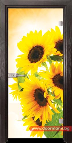 Стъклена врата модел Print 13-4 - Венге